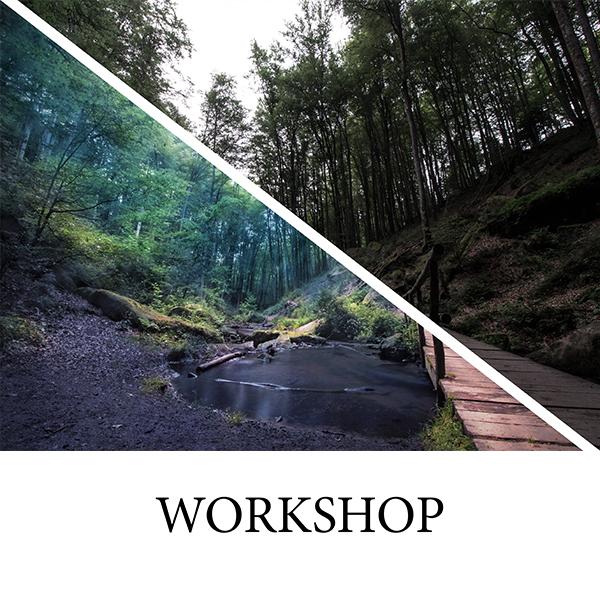 Samy Grundlagen workshop neu